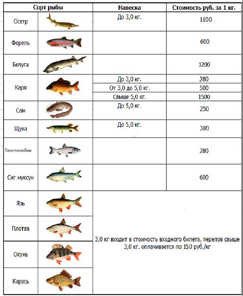Какие Сорта Рыб Для Диеты 5 На. Какую рыбу можно есть при похудении: список сортов и как приготовить