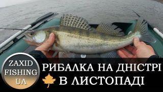 Рибалка на Дністрі, осінь, Чернівецька обл, Берново. 2018