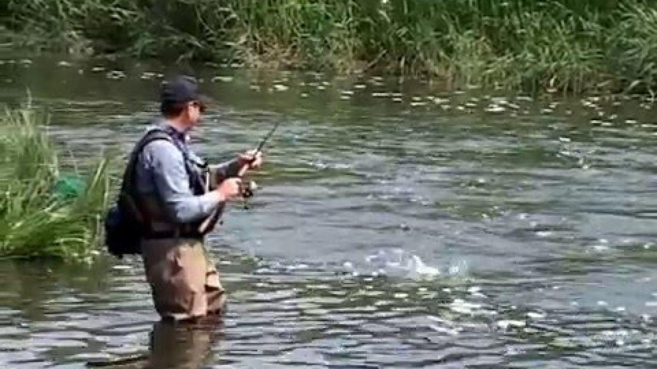 """Ловля Голавля на Реке """"Волчья"""": снаряжение и техника лова. """"О Рыбалке Всерьез"""" видео 106."""