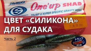 Цвет силикона на судака. Часть 2. Цвет Baby Bass. Sawamura One'up Shad.