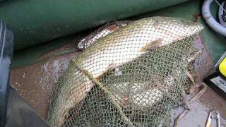 Рыбалка на р Вятка