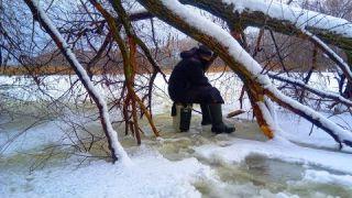 Ловля КАРАСЯ зимой в густом КОРЯЖНИКЕ