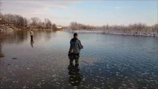 Ловля кленя (голавля) в грудні на спінінг ч -1