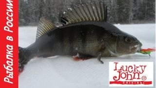 Балансир Lucky John + Окунь . Закрытие зимнего сезона 2016 - 2017