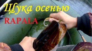 Rapala Minnow Spoon. Ловля щуки поздней осенью на незацепляйку Рапала