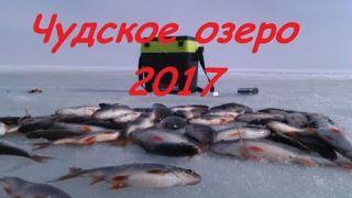 Чудское озеро. Зимняя рыбалка. Ловля плотвы , окуня и ерша !!!