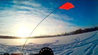 Простая зимняя рыбалка по первому льду. Ловля окуня и щуки на балансир. Жерлицы на щуку.