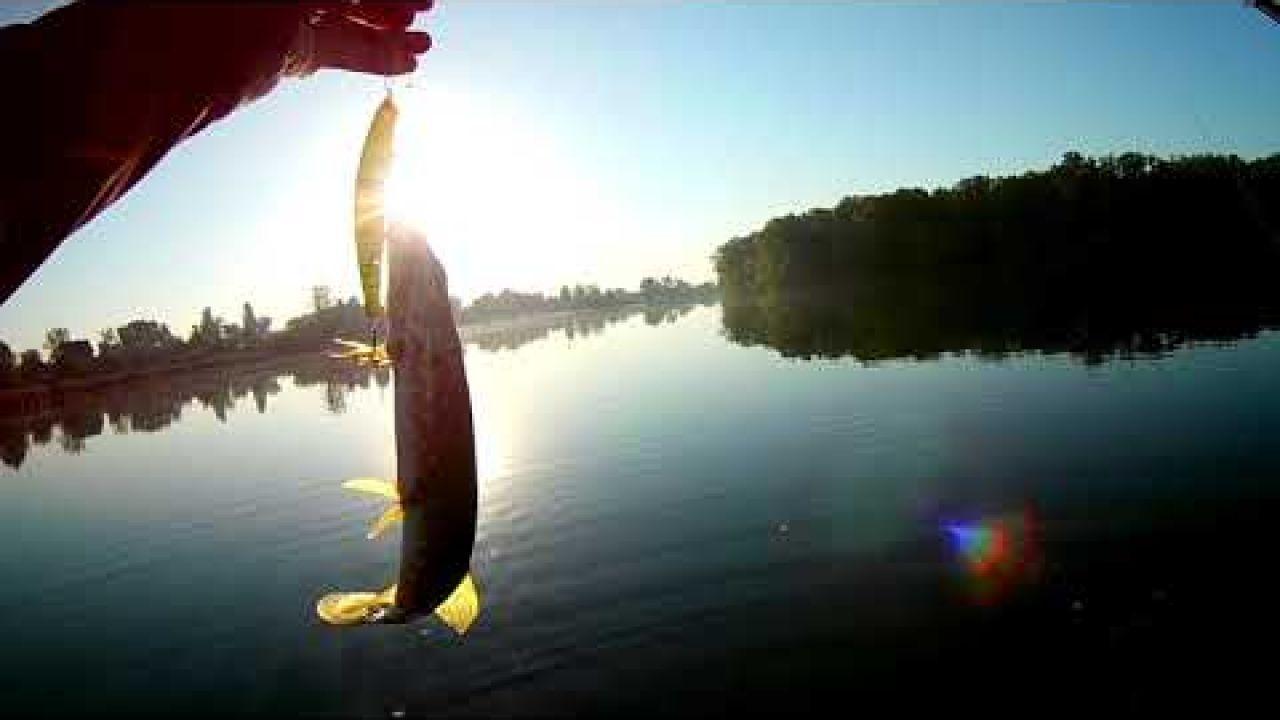 Рыбалка! Ловля щуки Осенью! Твичинг с лодки!