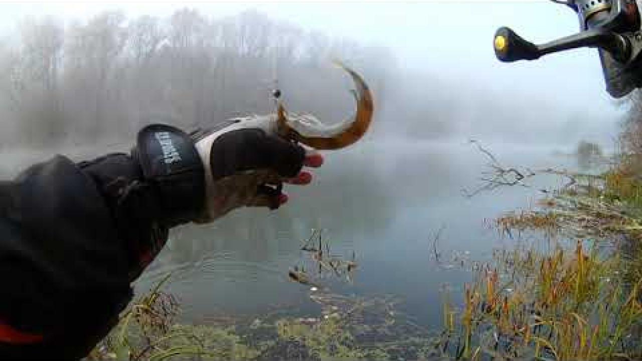 Ловля окуня на ультралайт. Рыбалка на Северском Донце