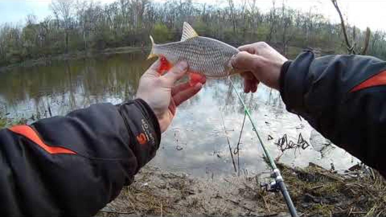 Рыбалка на поплавок 2020