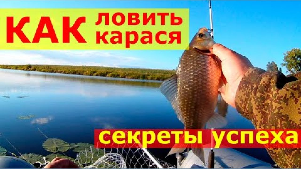 Рыбалка на карася. Ловля карася на фидер.