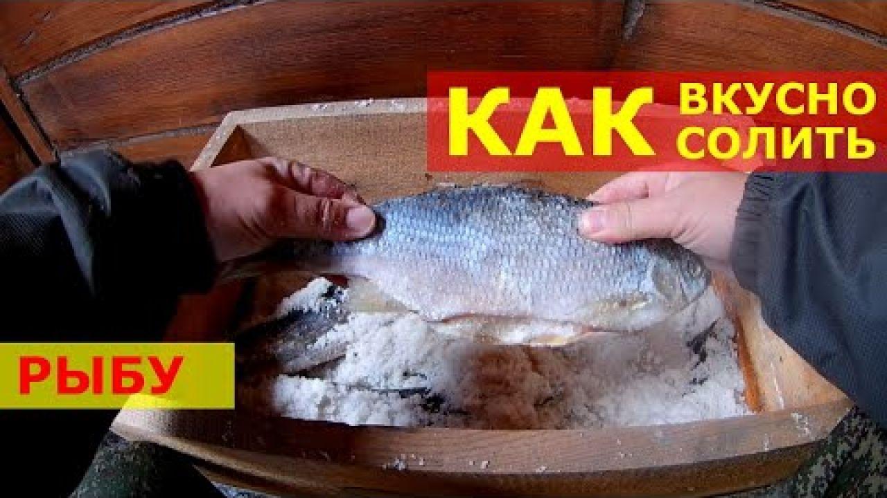 Сухой посол рыбы Лучший способ посола рыбы. Как вкусно солить и вялить рыбу. Как солить щуку.