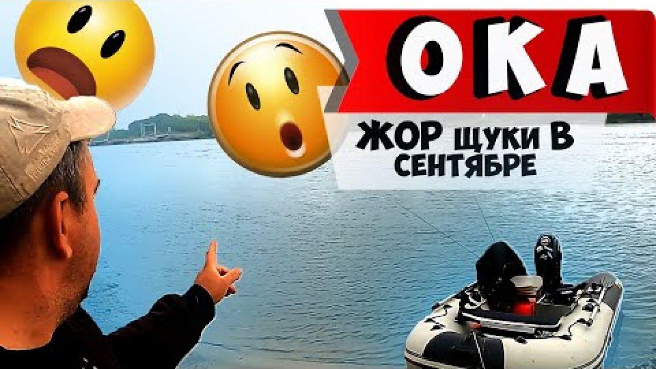 Осенний ЖОР щуки начинается. Река ОКА. Рыбалка в Подмосковье в СЕНТЯБРЕ 2020.