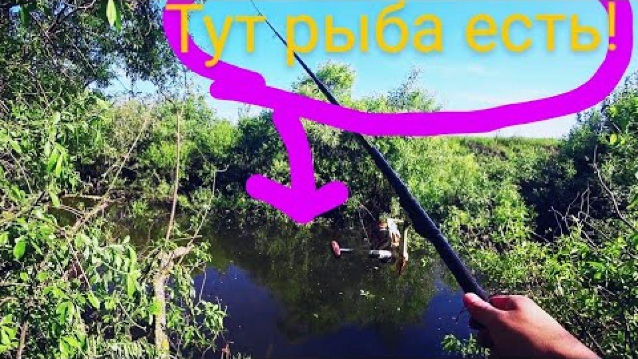 ЗА Рыбой в САМЫЙ КОРЯЖНИК. Карась на удочку летом.