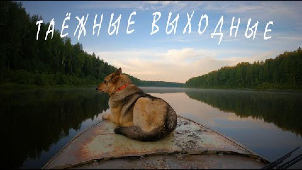 Душевный отдых на природе\Ночь в лесной избе\Рыбалка\Трофейный язь\Tohatsu 9.8 4т\ 4K